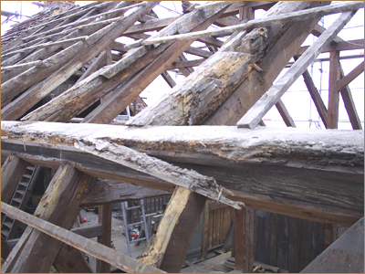 Dachstuhl - Holzbock im dachstuhl ...